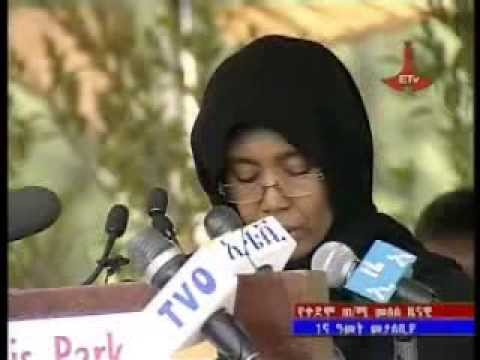Speech by Azeb Mesfin on the first year memorial of the late Meles Zenawi