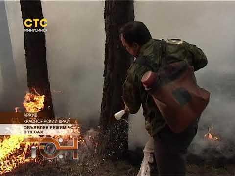 Объявлен режим ЧС в лесах