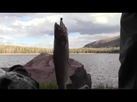 Ultralight Backpacking Into Remote Lakes For The Best Brook Trout Fishing!