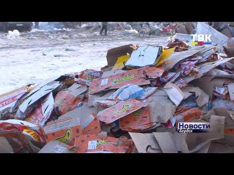 Закроют ли мусорный полигон в Бердске?