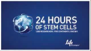 24 Hours of Stem Cells - 2013 Welcome