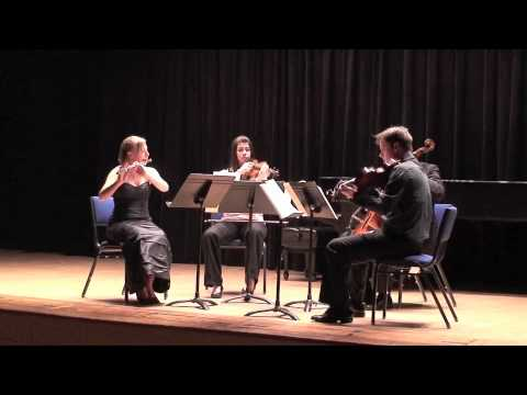 Mozart Flute Quartet in D Major - Movement 2