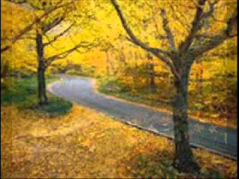 עליי שלכת ( autumn leaves )