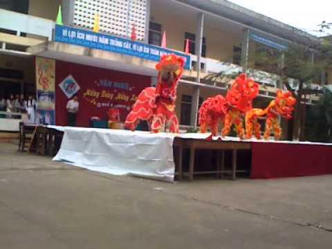 THPT Phan Dang Luu : Mua lan 2013
