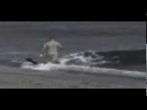 Người đàn ông bị cá voi ăn thịt trên bãi biển