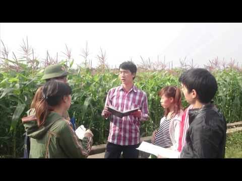 KỸ NĂNG ĐÀO TẠO NGƯỜI LỚN TUỔI   học viện NÔNG NGHIỆP Việt Nam - VNUA