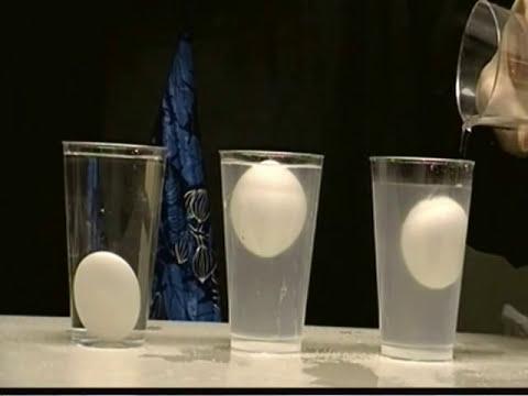 Tuzlu su  yumurta - özkütle deneyi