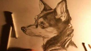 How To Draw A REALISTIC DOG MUST SEE THIS!! FANTASTIC