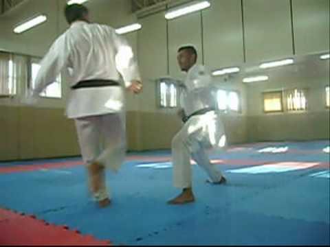 Araucária Karate Clube