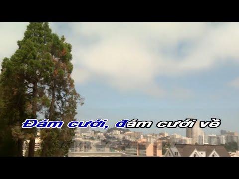 Vui Trong Ngày Cưới  Karaoke [beat goc]