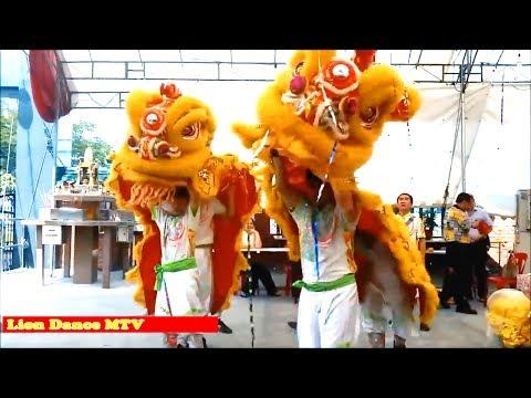 Lion Dance For Kids🔜 mua lan khai truong🔜 Lion Dace MTV