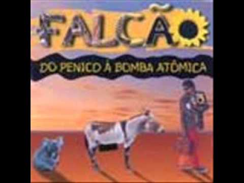 RABICHOLA DE JUMENTO - FALCÃO