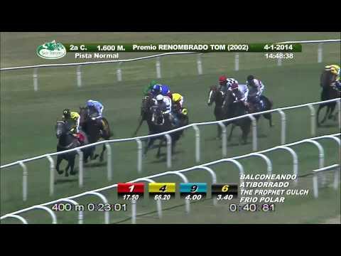 Vidéo de la course PMU PREMIO RENOMBRADO TOM