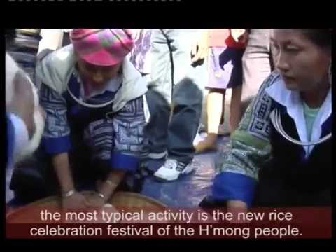 Lễ mừng cơm mới vùng cao Mù Căng Chải - Kênh TV Du lịch Văn hóa lễ hội truyền thống VN