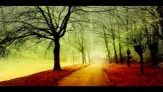 Way to Heaven - Reiki Music