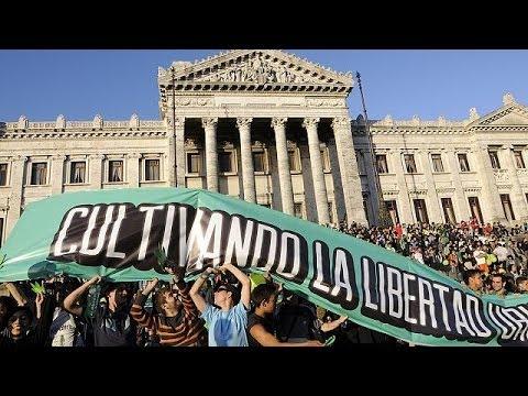 Uruguay makes history by legalising entire marijuana market