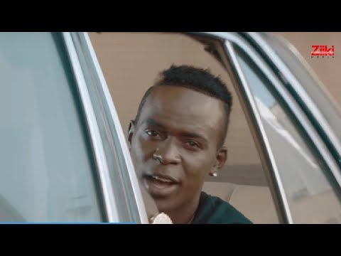 Willy Paul - Vigelegele  video