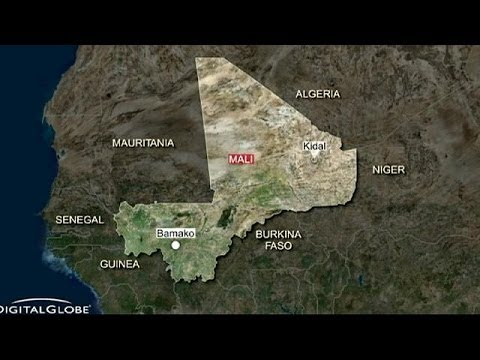 Mali: two French journalists killed - Reuters