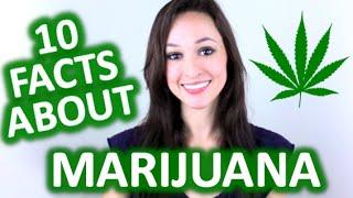 10 Interesting Facts About Marijuana