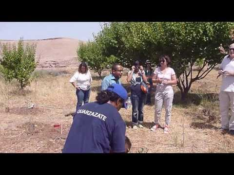 MOROCCO - Morocco Planting a Tree | Morocco Travel - Vacation, Tourism, Holidays  [HD]