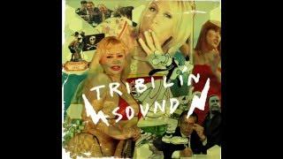 Tribilin Sound - Cumbia tu madre