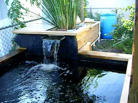 My Koi Pond w/ Water Falls.....3000 gallon