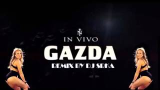 In Vivo - Gazda ( Remix by DJ Srka )