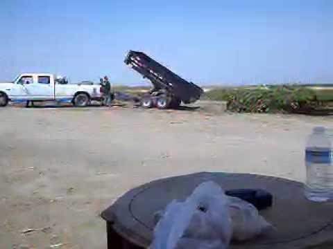 Trailas De Venta >> Traila dompeando basura - YouTube
