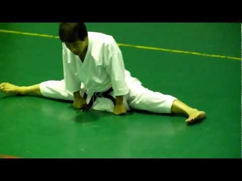 Masao Kawasoe Sensei Seminar 2011 part 1