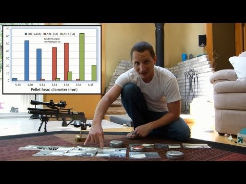 Does Pellet Sorting Improve Air Rifle Accuracy?
