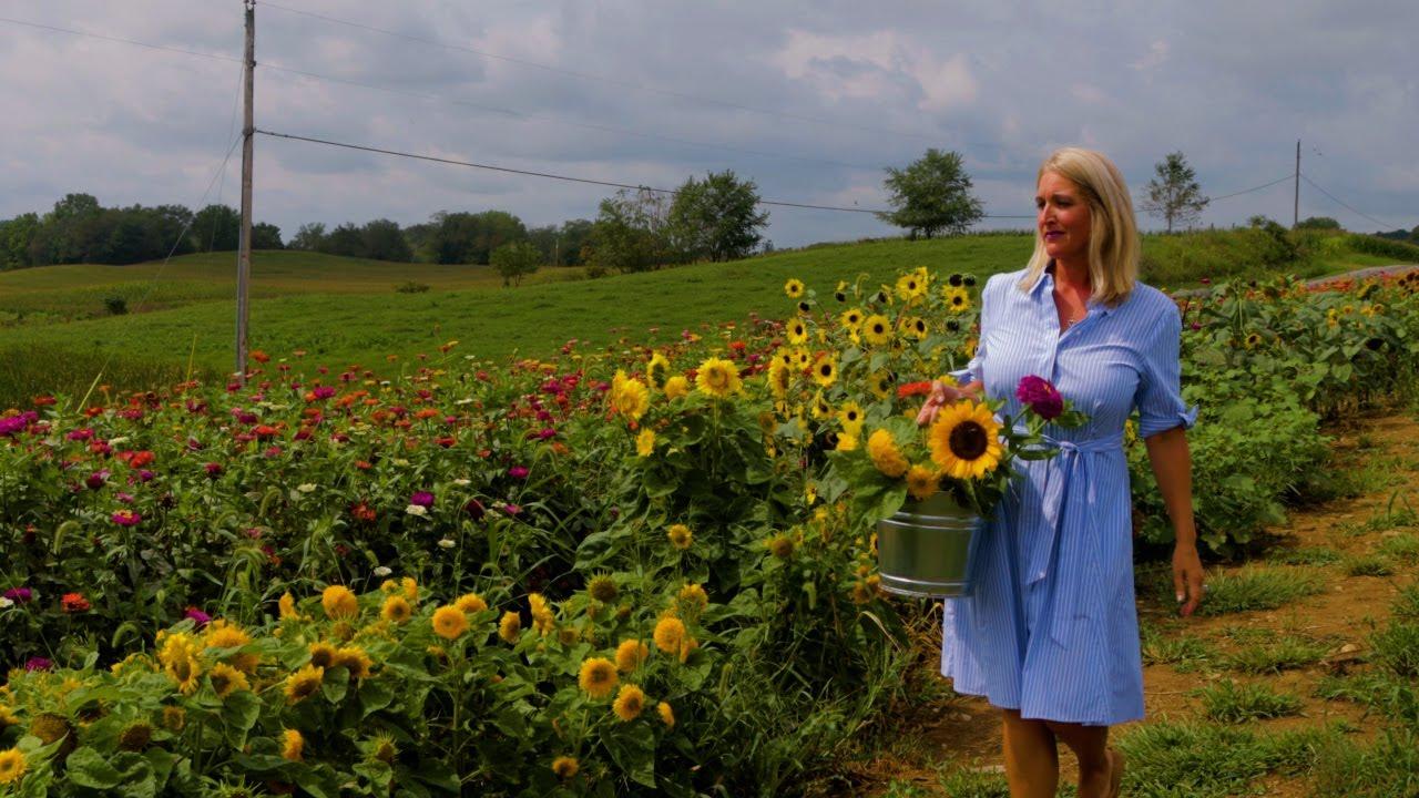 Featured Business: Hummingbird Hill Flower Farm