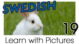 Learn Swedish Vocabulary with Pictures - Farm Animals