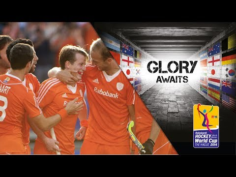 South Africa vs Netherlands - Men's Rabobank Hockey World Cup 2014 Hague Pool B [08/6/2014]