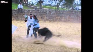 [Bull has no mercy on loving couple] Video