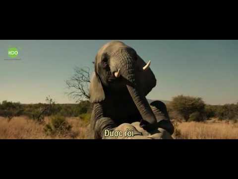 Film 18+ của mỹ bao hài dành cho các AE :))