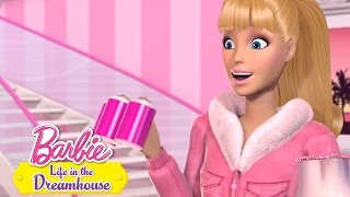 Barbie 59 - Ice Ice Barbie II.