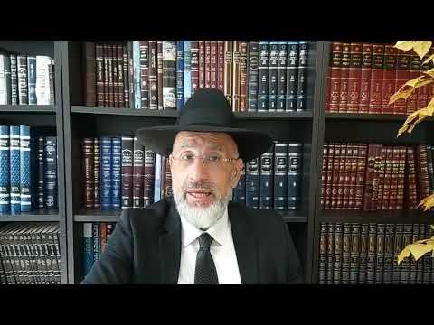 Parashat Choftim Seule la Torah sait où est la vérité. Leïlouy nichmat de Hélène Badra bat Lysette zal