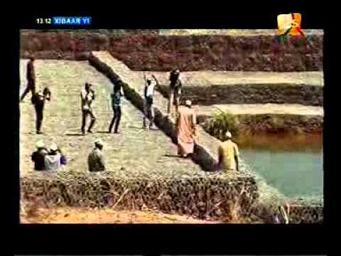 seneweb.com/Xibaar Yi 2sTv De Ce Mardi 24 Presenté par Samba Ardo Bâ