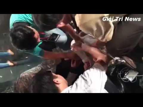 Đàm Vĩnh Hưng gặp tai nạn