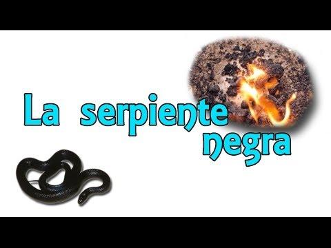 El experimento de la serpiente negra - La serpiente del faraón (Experimentos Caseros)