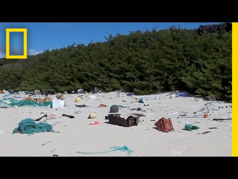 38 Million Pieces of Plastic Trash Cover This Remote Island | National Geographic