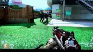 INVINCIBILITY GLITCH/HACK MULTIPLAYER NukeTown 2025 Black