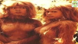 Top 10 loài động vật giống người đến kỳ lạ - Top Khám Phá Thế Giới