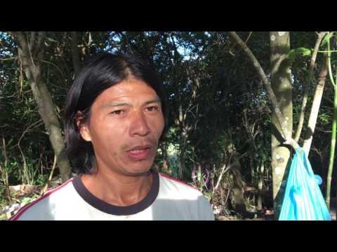 Dia do Índio: relatos da situação indígena em Santa Rita