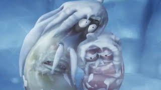 Larva - blizzard