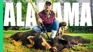 Alabama Hog Hunting Gone Wrong (Hospital) *Stitches*