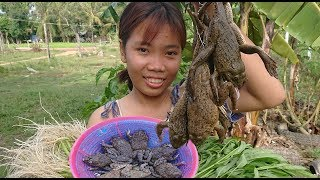 How To Grill Frog For Dinner / Cambodia Village Food