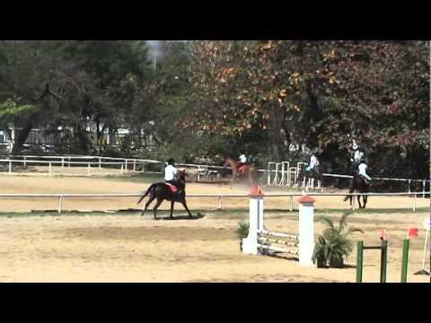 CMPOLO - 5a Etapa do Ranking 2011 - Rodolfo de Lima monta Lina