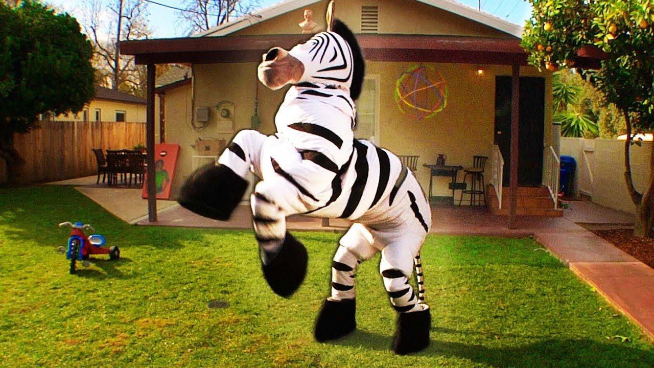 Rhett & Link – Dope Zebra