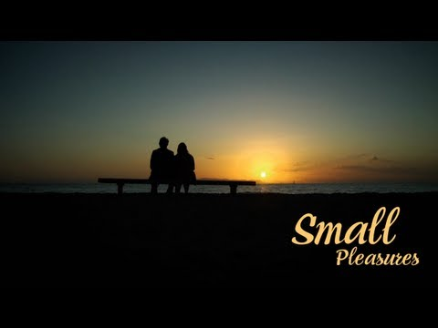 Small Pleasures (Μικρές Χαρές) 2008